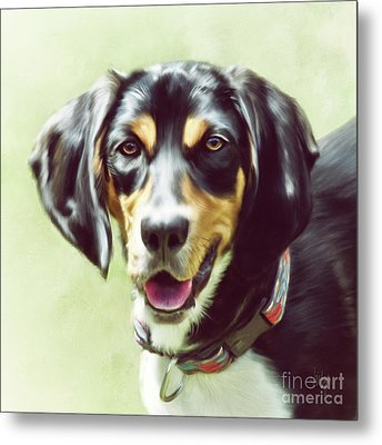 Metal Print featuring the digital art Black And Tan by Lois Bryan