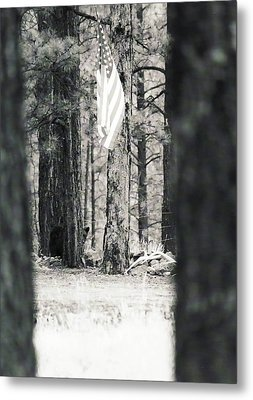 Metal Print featuring the photograph Black Bear Pledge  by Juls Adams