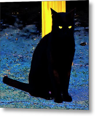 Black Cat Yellow Eyes Metal Print