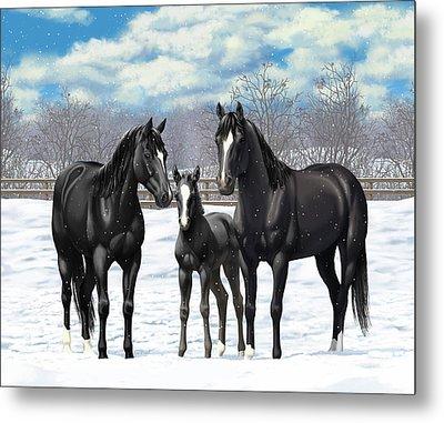 Black Horses In Winter Pasture Metal Print