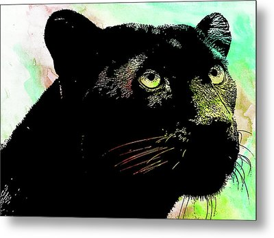 Black Panther Animal Art Metal Print