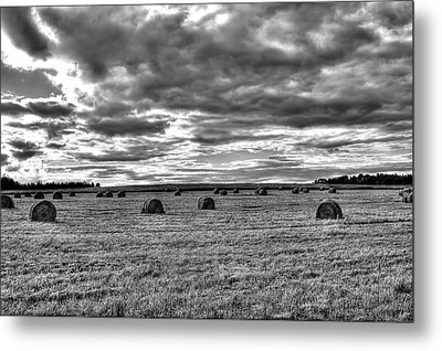 Metal Print featuring the photograph Black-white Hay Day by Gary Smith