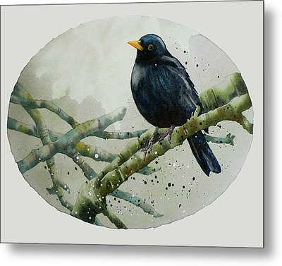 Blackbird Painting Metal Print by Alison Fennell