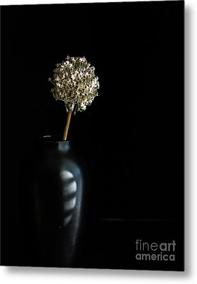 Blooming Onion Metal Print