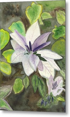Metal Print featuring the painting Blossom At Sundy House by Donna Walsh
