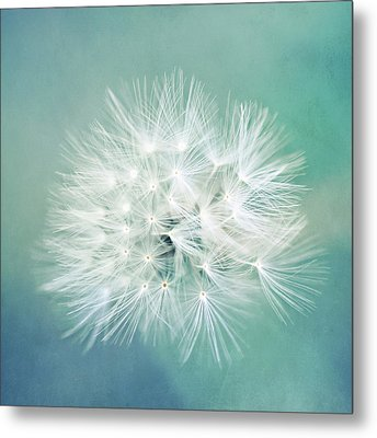Metal Print featuring the photograph Blue Awakening by Trish Mistric
