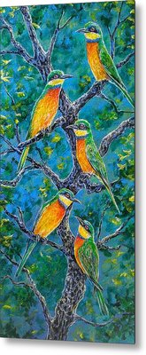 Blue Breasted Bee Eater Metal Print by Gail Butler