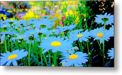 Metal Print featuring the mixed media Blue Daisy by Terence Morrissey