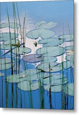 Metal Print featuring the photograph Blue Dreams by Doris Potter