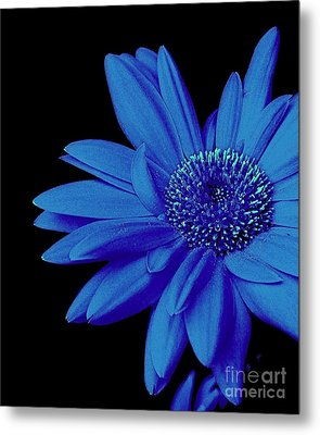 Blue Metal Print by Elfriede Fulda