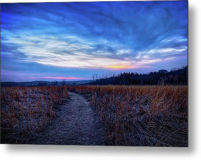 Metal Print featuring the photograph Blue Hour After Sunset At Retzer Nature Center by Jennifer Rondinelli Reilly - Fine Art Photography