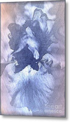 Blue Iris Abstract Metal Print