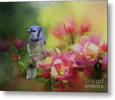Blue Jay On A Blooming Tree Metal Print by Eva Lechner