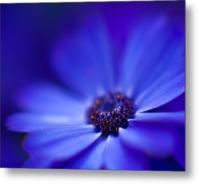 Blue Metal Print by Mike Reid