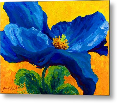 Blue Poppy Metal Print by Marion Rose