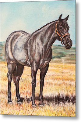 Blue Quarter Horse Metal Print by Lucy Deane