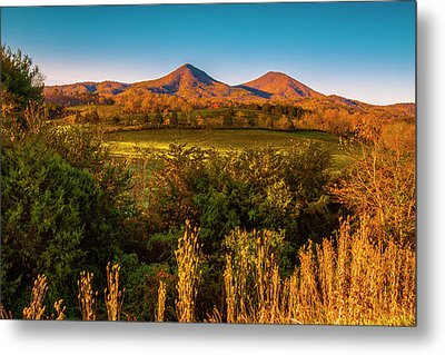 Metal Print featuring the photograph Blue Ridge Fall by Steven Ainsworth
