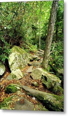 Metal Print featuring the photograph Blue Ridge Parkway Hiking Trail by Meta Gatschenberger