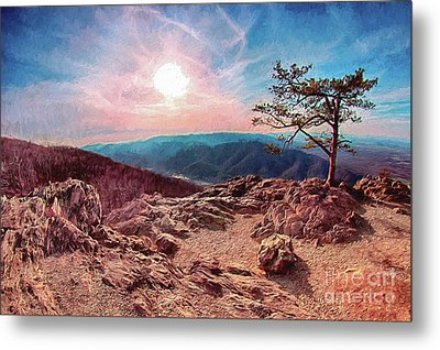 Blue Ridge Rocky Hilltop And Tree At Sunset Ap Metal Print