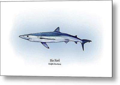 Blue Shark  Metal Print by Ralph Martens