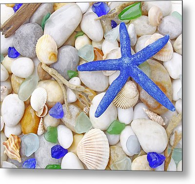 Blue Starfish Metal Print by Kelly S Andrews