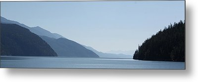 Blue Summer Metal Print by Cathie Douglas