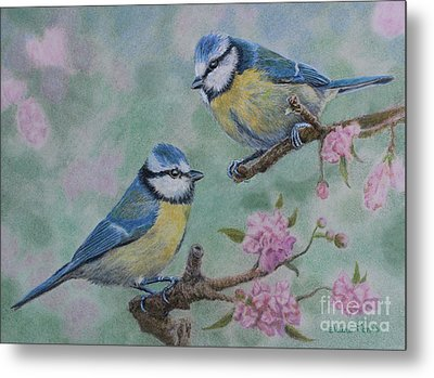 Blue Tits And Cherry Blossom Metal Print by Elaine Jones
