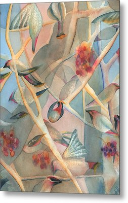 Bohemian Waxwings Metal Print by Anne Havard