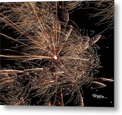 Metal Print featuring the photograph Bold Burst #0711 by Barbara Tristan