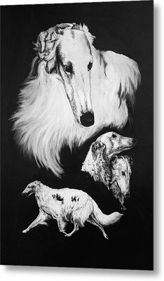 Metal Print featuring the drawing Borzoi by Rachel Hames