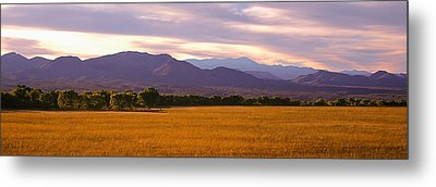 Bosque Del Apache National Wildlife Metal Print by Panoramic Images