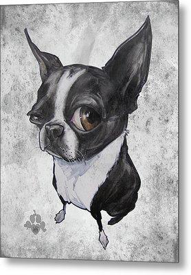 Boston Terrier - Grey Antique Metal Print