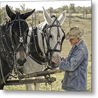 Bound By Trust Metal Print by Ron  McGinnis