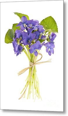 Bouquet Of Violets Metal Print by Elena Elisseeva