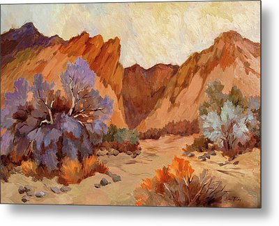 Box Canyon Metal Print by Diane McClary