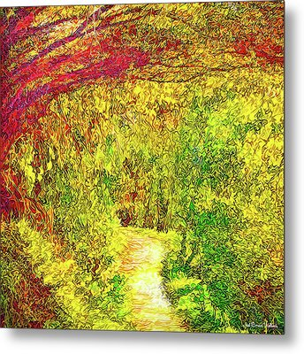 Bright Afternoon Pathway - Trail In Santa Monica Mountains Metal Print