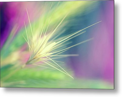 Bright Weed Metal Print by Terry Davis