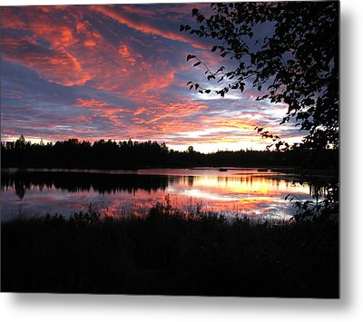 Brilliant Sunset Framed By Tree Metal Print