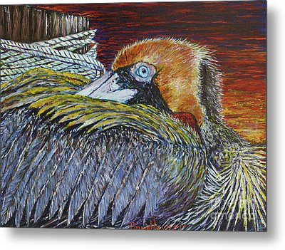 Brown Pelican Metal Print by David Joyner