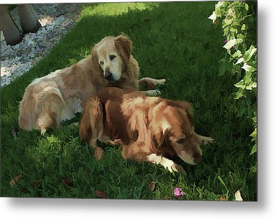 Bubba And Casey Metal Print by Carol Kinkead