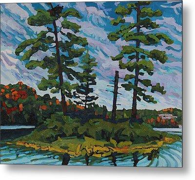 Buck Lake Island Metal Print