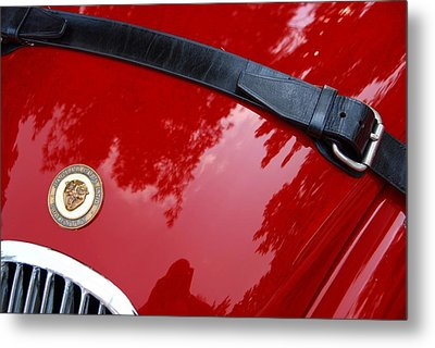 Metal Print featuring the photograph Buckle Up by John Schneider