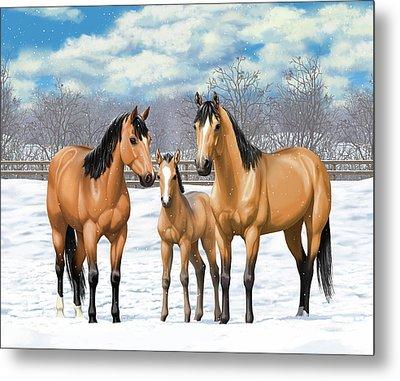 Buckskin Horses In Winter Pasture Metal Print