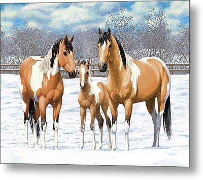 Buckskin Paint Horses In Winter Pasture Metal Print