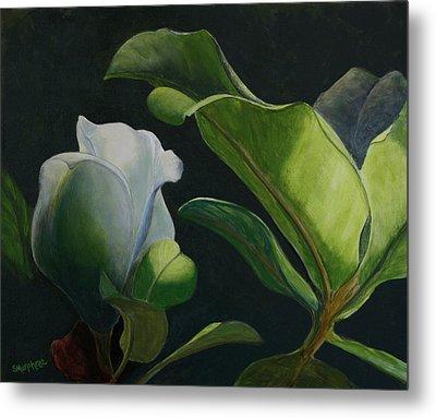 Budding Magnolia Metal Print