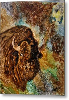 Buffalo Metal Print by Maris Sherwood