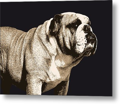 Bulldog Spirit Metal Print by Michael Tompsett