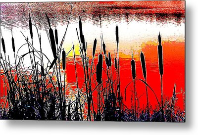 Bullrushes Against The Sunset Metal Print