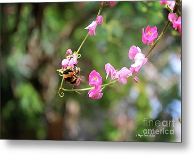 Metal Print featuring the photograph Bumble Bee1 by Megan Dirsa-DuBois