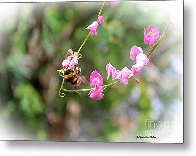 Metal Print featuring the photograph Bumble Bee2 by Megan Dirsa-DuBois